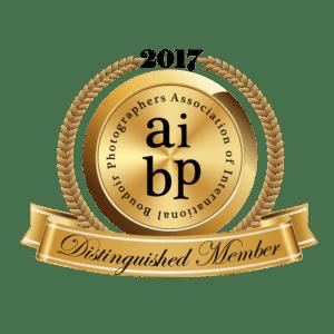 AIBP 2017 Distinguished Member